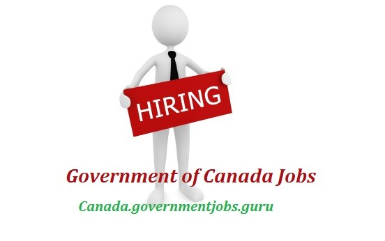 Td Career Edmonton For Pia Client Service Associate Jobs In Edmonton Ab Government Of Canada Jobs