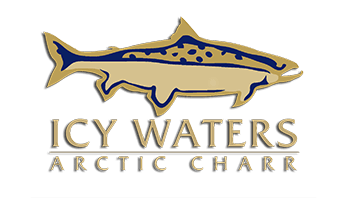 Icy Waters jobs
